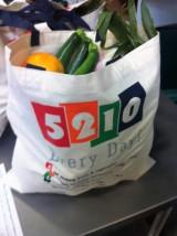 5210-bag